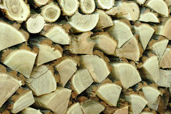 Pile of chopped logs. Acacia tree Royalty Free Stock Image