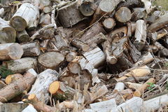 Pile of Chopped Logs Royalty Free Stock Photos