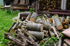Pile of chopped logs branche to woodshed in garden Royalty Free Stock Photo