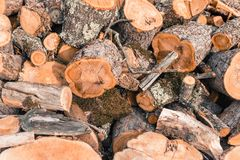 Chopped Wood logs. A pile of chopped wood background Royalty Free Stock Images