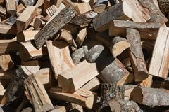 Pile of chopped wood logs Stock Image