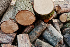 A pile of chopped wood, sawn wood Royalty Free Stock Photography