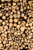 Pile of chopped wood Stock Photography
