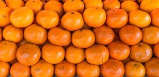 Pile of Citrus reticulata Stock Photography