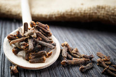 Pile cloves Stock Images