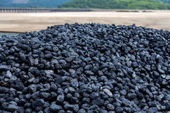 Pile of coal. At Barmouth railway station, Wales Stock Photo