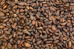 Pile of cocoa beans for background Royalty Free Stock Images
