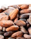 Pile of cocoa beans. macro Royalty Free Stock Photos