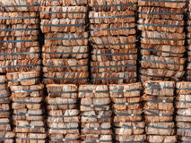 Pile of coconut coir for agriculture. Royalty Free Stock Photography