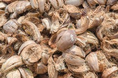 Pile of coconut husk Royalty Free Stock Image