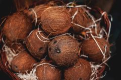Pile of coconuts as  background. Organic coconuts  at  market in Royalty Free Stock Images