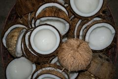 Pile of coconuts in the basket. Pile coconuts in the basket garnish Stock Images