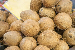 Pile of coconuts Royalty Free Stock Images