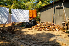 Pile of coconuts scraps Royalty Free Stock Photo