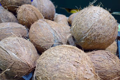 Pile of coconuts. A pile of coconuts in the store. Nature Background Royalty Free Stock Images