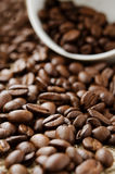 Pile of coffee beans Stock Photography