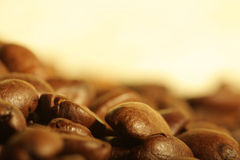 Pile of coffee beans Royalty Free Stock Photos