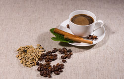 Pile of coffee beans and herbs with cup of coffee. Pile of two types of different colored coffee beans beside full teacup and saucer over gray tablecloth Stock Photos