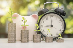 Pile coin with tree and piggy bank on green bokeh light. Background. save growing money and goal concept Royalty Free Stock Photos