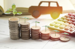 Pile of coins with small tree grow. Concept in loan, finance, selling and buying car Royalty Free Stock Image