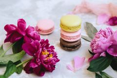 A pile of colorful delicious macaroon closeup with pink peony flowers, petals on a light background concrete. Horizontal Stock Image
