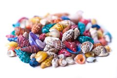 Pile of colorful seashells Stock Photo
