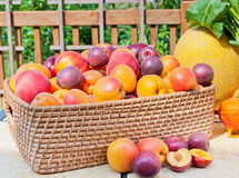 Pile of colorful summer fruits Royalty Free Stock Images