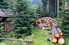 Pile coupée d'identifiez-vous de bois de chauffage Photos stock