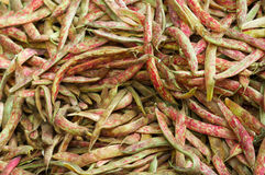 Pile of Cranberry Beans Stock Photos