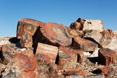 Pile of cristalized petrified wood Royalty Free Stock Image