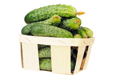 Pile of cucumber in a veneer basket isolated Stock Images