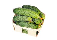 Pile of cucumber in a veneer basket isolated Stock Photography