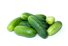 Pile of cucumbers Stock Image