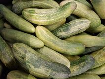 Pile of cucumbers. Full frame of cucumbers at market stock image