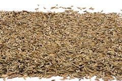Pile of cumin Royalty Free Stock Photo