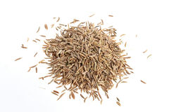 Pile of Cumin seeds isolated on white background Stock Photography