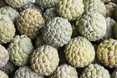 Pile of custard apples Royalty Free Stock Photos