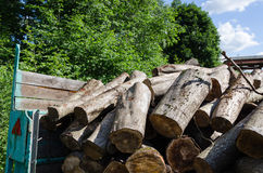 Pile of cut logs in trailer, forest seasonal work Stock Photos