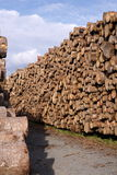 Pile of cut timber Stock Photo