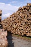 Pile of cut timber Stock Photo