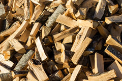 Pile of Cut Trees Royalty Free Stock Photo