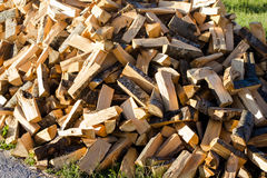 Pile of Cut Trees Royalty Free Stock Image