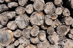 A pile of cut wood Royalty Free Stock Photos