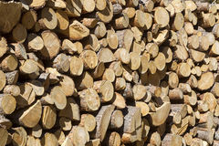 Pile of cut wood Stock Image
