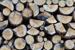 A pile of cut wood Royalty Free Stock Images