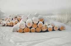 Pile of cut wood logs under winter snow Stock Photography