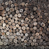 A pile of cut wood stump log Stock Photography