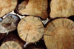 pile of cut wood stump log Royalty Free Stock Photos