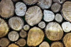 A pile of cut wood Stock Photography