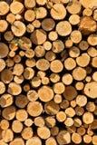A pile of cut wood stump log texture Stock Image